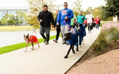 Monthly Spotlight: American Heart Association & 2021 Heart Walk